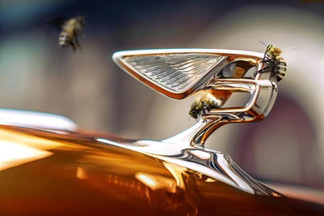 宾利安睿轲:持续打造符合至高期待的超豪华座驾